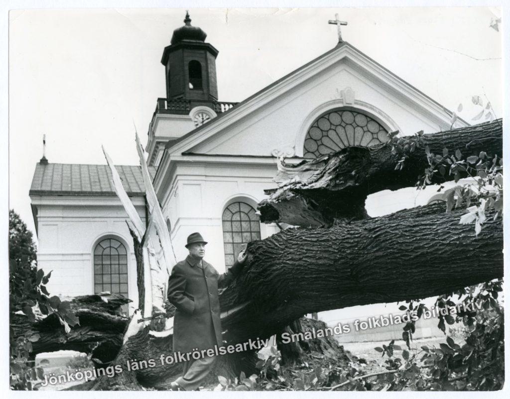 En man i rock och hatt står vid ett stort träd som knäckts vid roten. I bakgrunden en kyrkobyggnad.