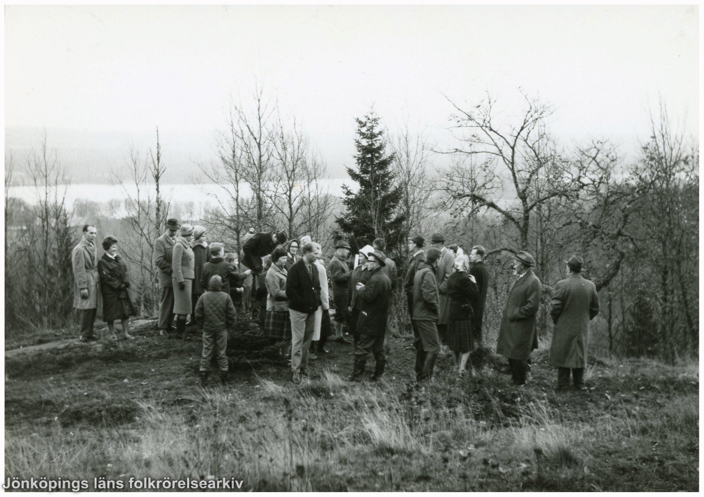 En grupp människor i gles skog på en höjd. I bakgrunden skymtar en sjö.