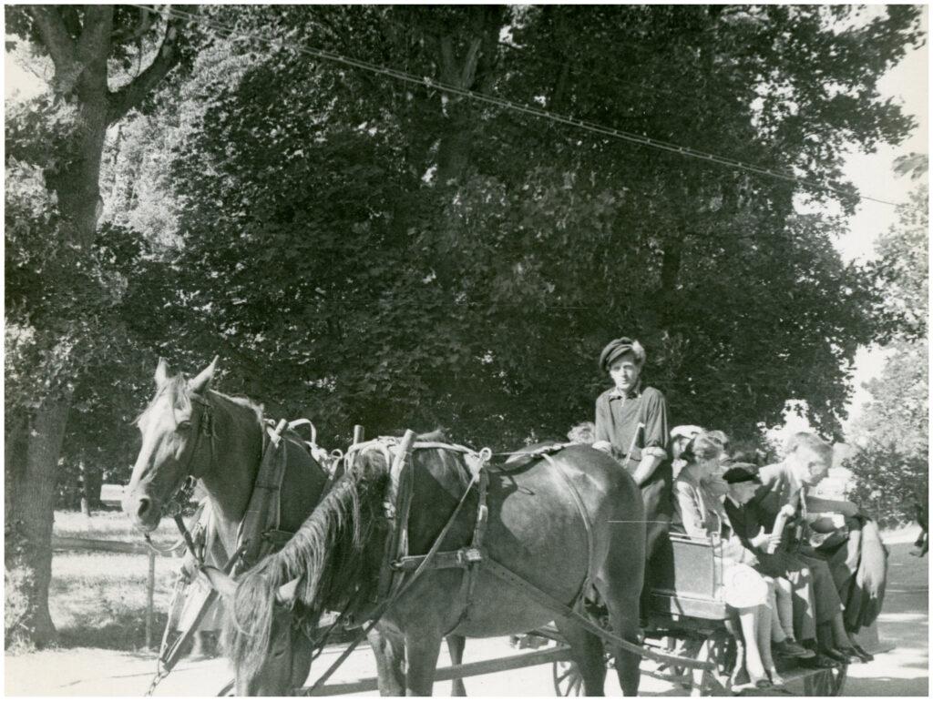 Foto av man som kör häst och vagn, remmalag. På  flaket sitter människor.